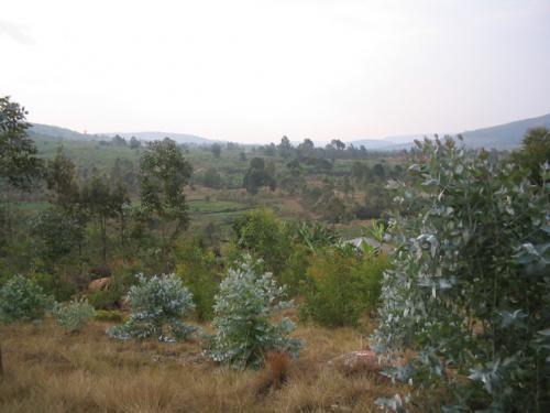 Le paysage de la colline Ruvumu